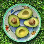 8 Reasons You Should Start Hoarding Avocados | C it Nutritionally | Elite Daily