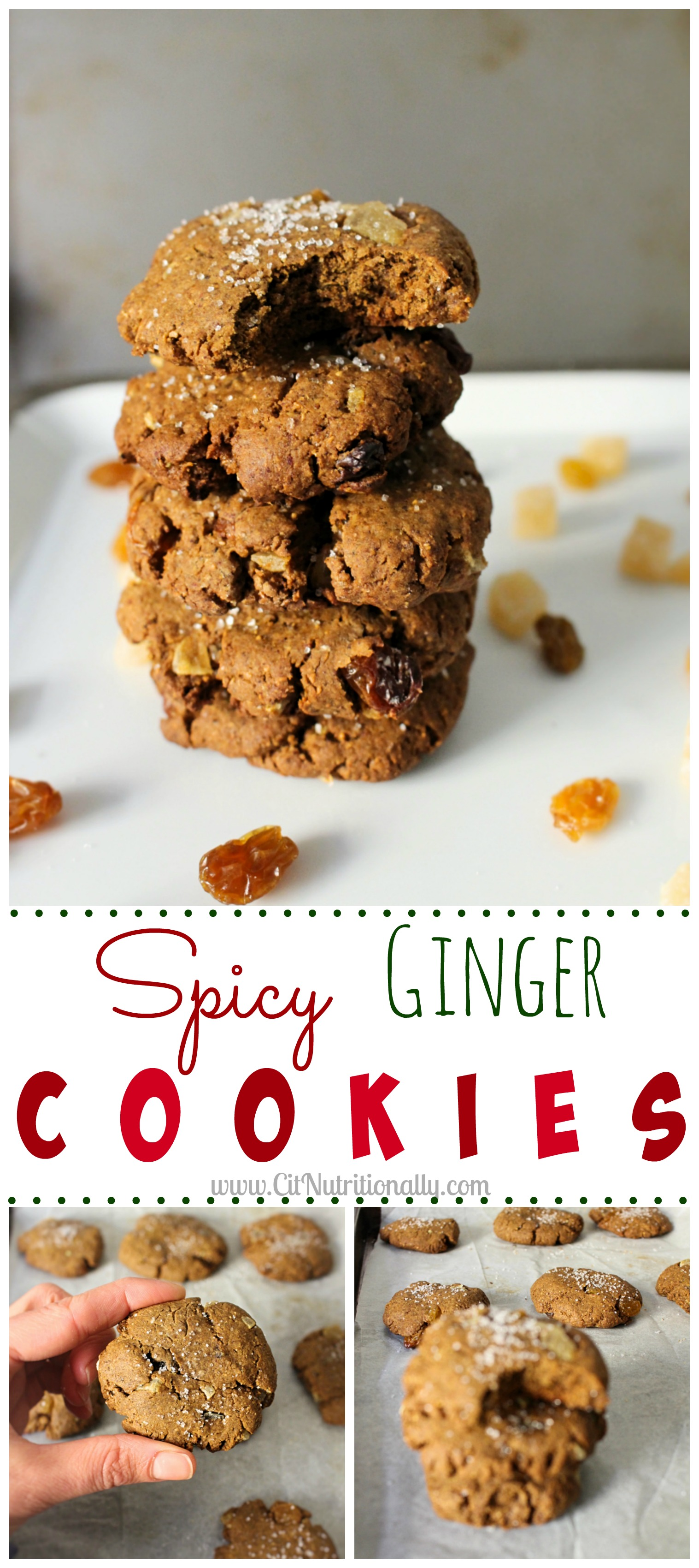 Spicy Ginger Cookies | C it Nutritionally #vegan option #nutfree #peanutfree #eggfree #dairyfree #soyfree #Christmas #dessert #baking