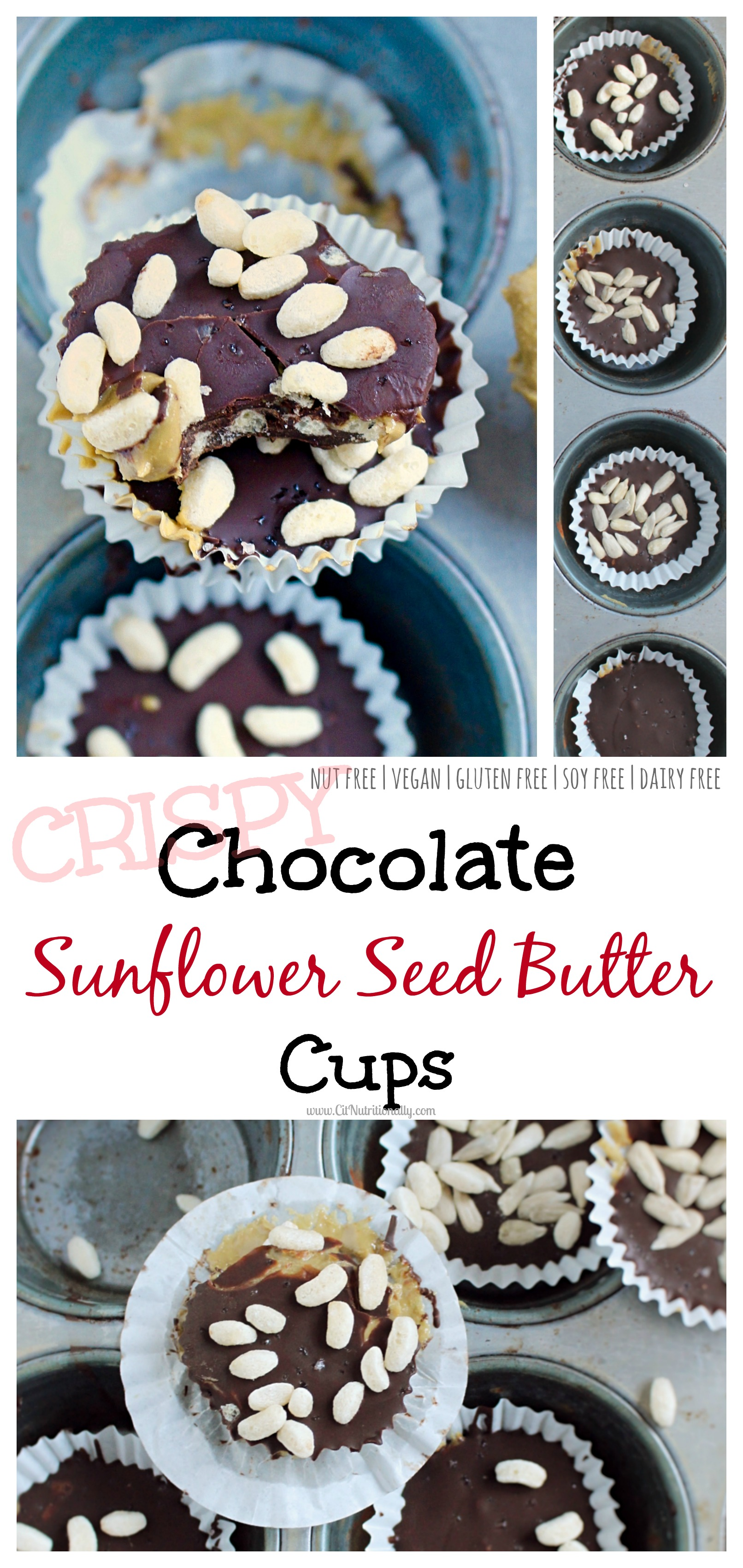 No Bake Crispy Chocolate Sunflower Seed Butter Cups | C it Nutritionally Nut Free, Gluten Free, Egg free, Soy free, Dairy Free